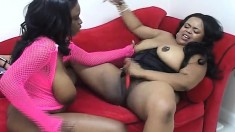 Curvy ebony girls use tongues, fingers and toys to please each other