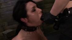 Isa Mendez, Abbi Roads, Lexy Villa, and Brooklyn Daniels go all out in a lesbian BDSM session