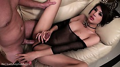 Horny shemale kitty munches on cock before she gets her ass drilled
