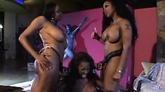 Black bitch treats her ebony girlfriends to her new strap-on dildo