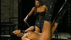 Busty piece of ass gets tied down and punished by two lusty lesbians