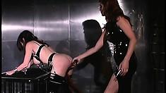 Fine brunette slave gets her pussy lips tortured by her mistress