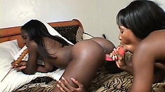 Delightful black lesbians get together on the bed and please each other's cunts