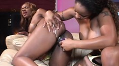 Voluptuous black lesbians try their new sex toys and offer each other pure pleasure